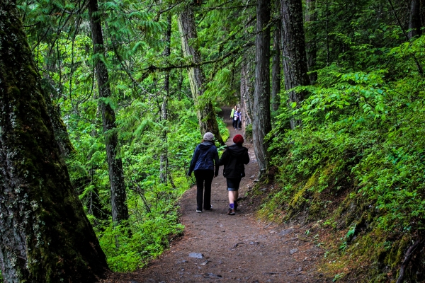 7 Short and Beautiful Hikes Around Whistler