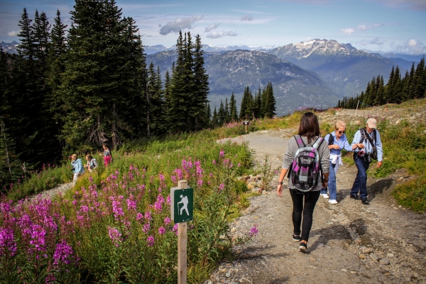 Hiking on Whistler and Blackcomb Mountains