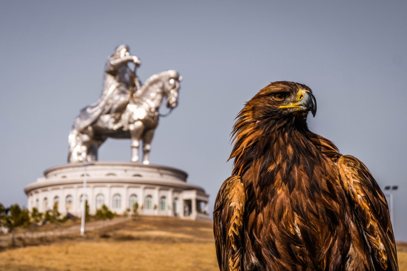 A day trip to Gorkhi Terelj National Park