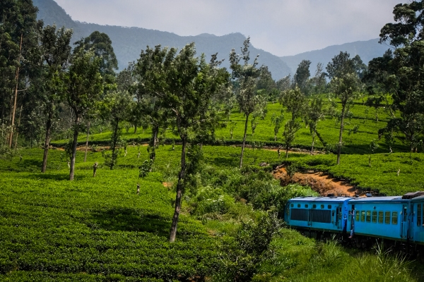 Riding that famous train from Kandy to Ella